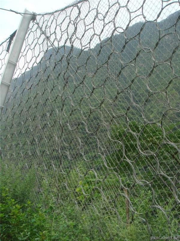 玉树环形被动网厂家