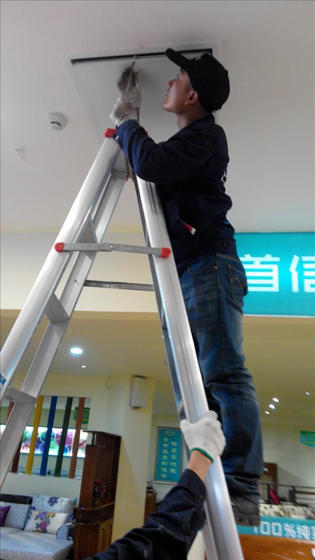 都江堰供应专业除虫灭鼠公司经销商