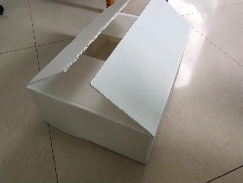 揭阳专业钙塑箱定制