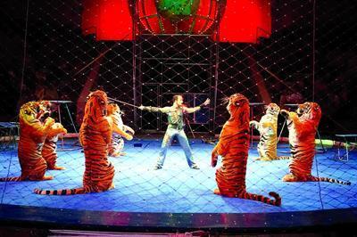 葫芦岛马戏团杂技表演哪里有专业表演
