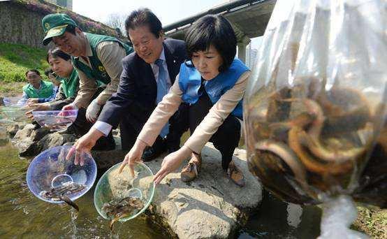 佛山泥鳅养殖方法
