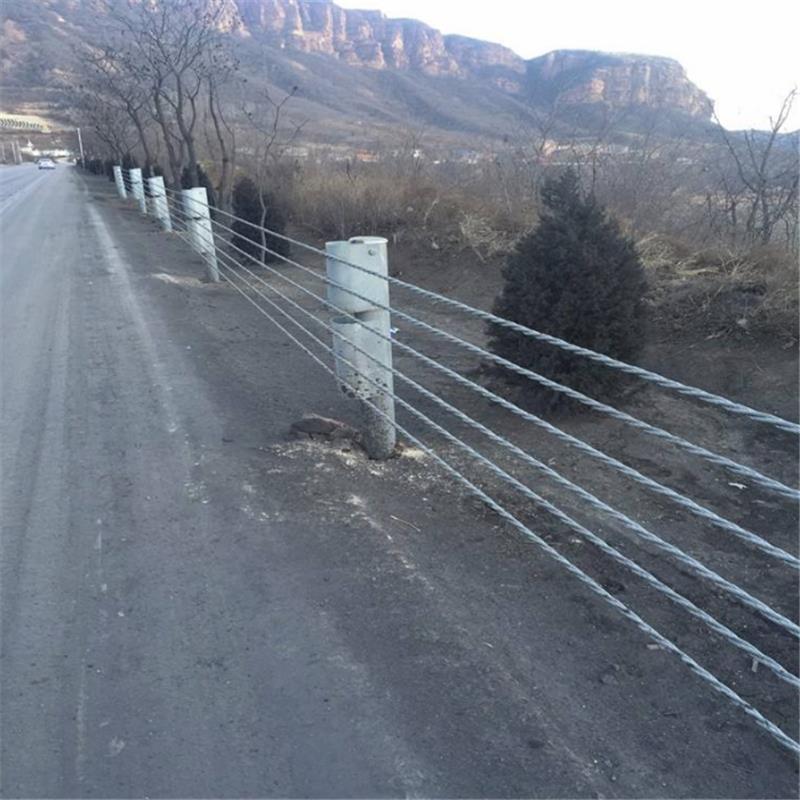 安徽现货缆绳护栏生产厂家