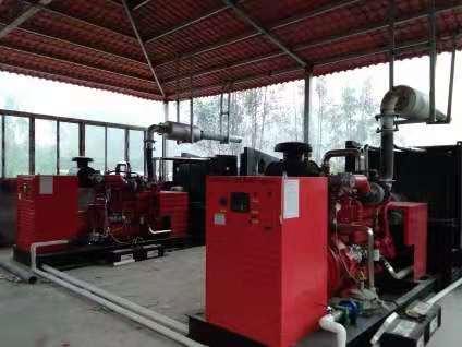 齐齐哈尔沼气发电机组价格