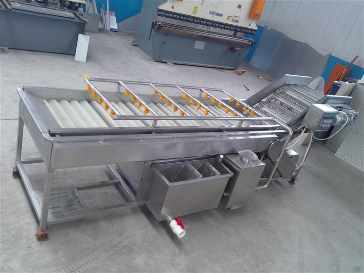 大姜专用气泡清洗机生产