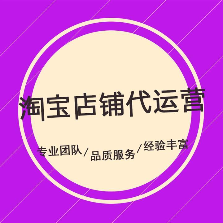 琼中黎族苗族自治县淘宝店铺代运营价格