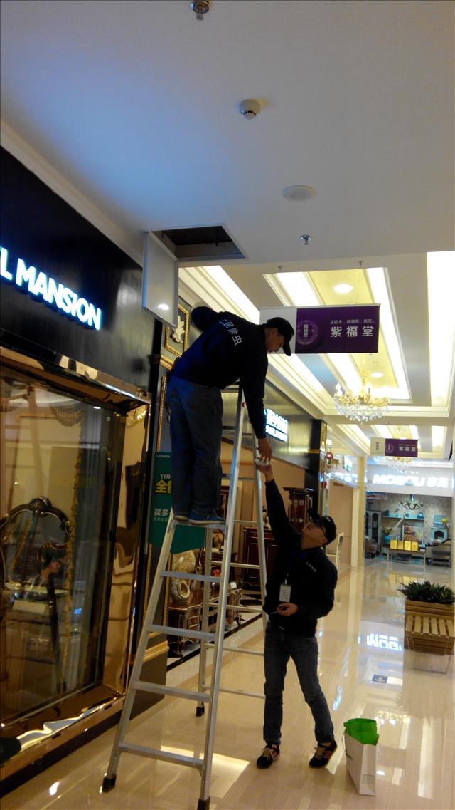 沙湾银行除虫杀虫公司