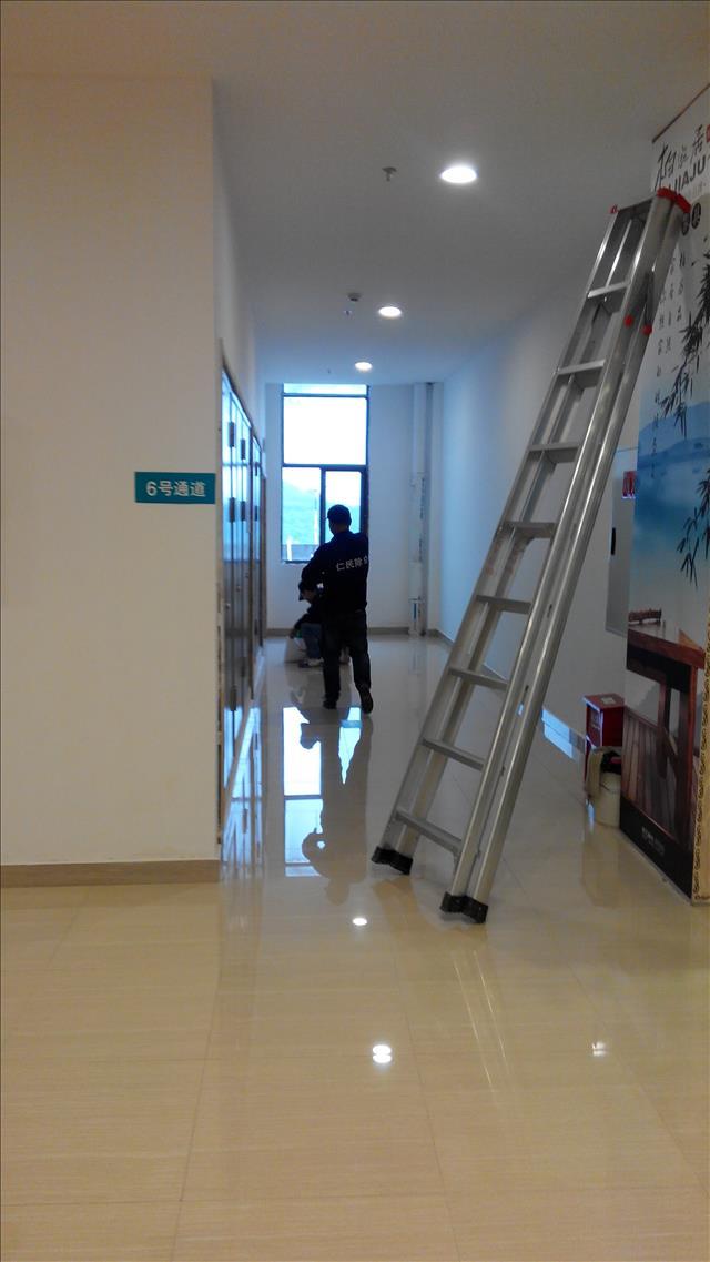 彭镇银行专业除虫公司