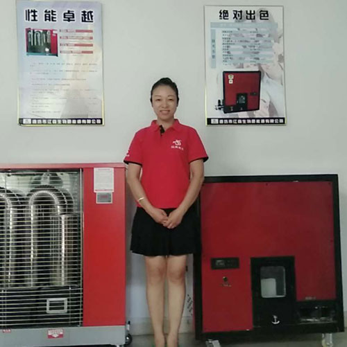 邯郸全自动220平米颗粒水暖炉品牌 生物质颗粒水暖炉 节能