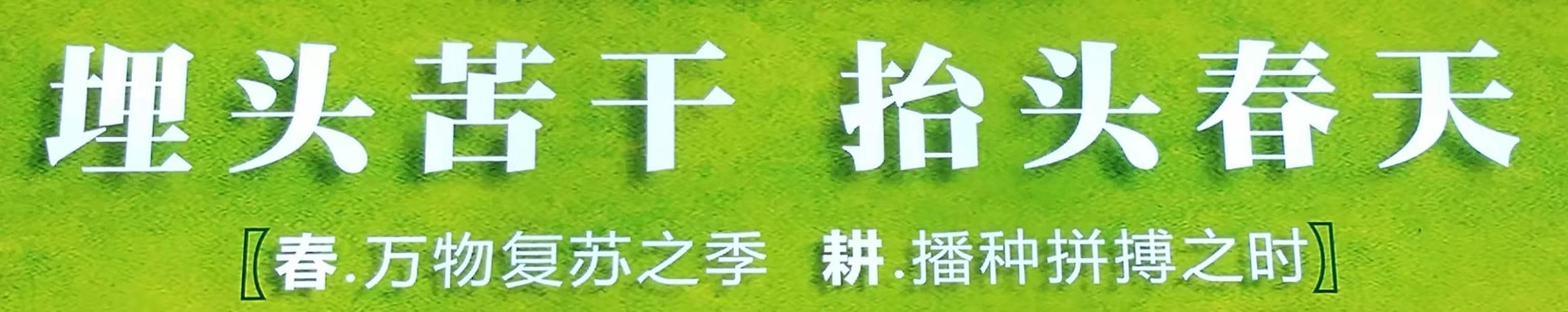 枣庄岩棉板厂商