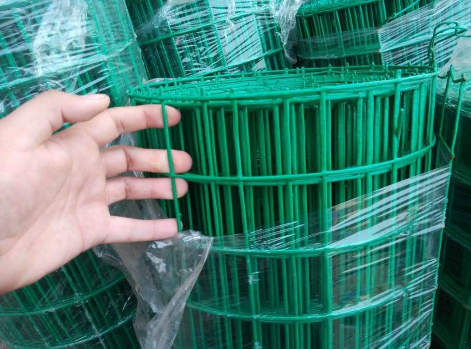 玉林圈地荷兰网