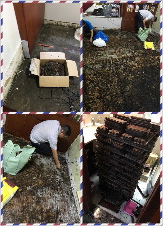 梅林一村多层木地板维修电话号码
