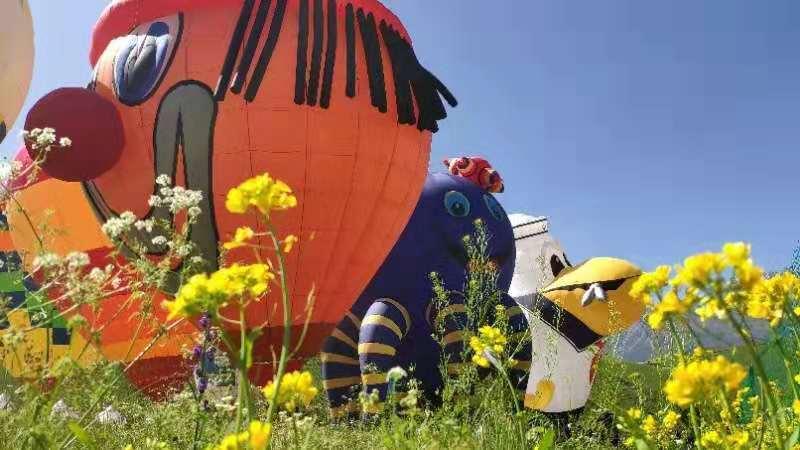 嘉兴专业载人热气球飞行体验自由飞行