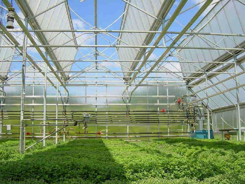 澄迈县1.5厚采光板生产商