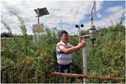 吉林气象监测系统批发