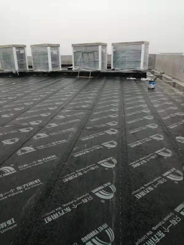 杭州专业做防水的公司