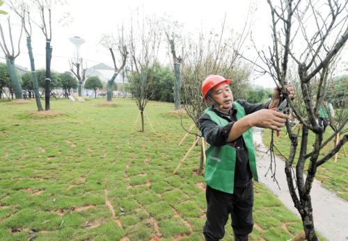 蔡甸区绿化施工公司